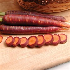 Carrot Purple Haze 40 seeds