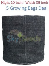 Grow Bags Fabric  5 Bags Deal  08 w / 10h