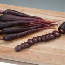 Carrot   Deep Purple   40 Seeds