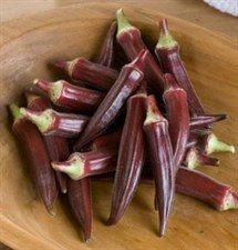Okra Seed Red Burgundy 10 seeds