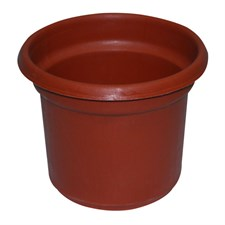 "PLASTIC POT 6"" inches  12 POT"