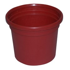 "PLASTIC POT 5.25"" inches"