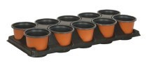 10 CX PP Tall Tray with 10 sheet pot