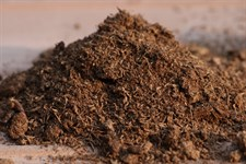 Peat Moss (Sowing Media )