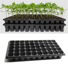 100 seedling trays 50 holes