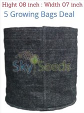 Grow Bags Fabric  5 Bags Deal  height 8 Inch width 7 inch
