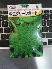 BROCCOLI F1 10  GM JAPAN