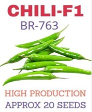 Chili BR-763 HIGH PRODUCTION