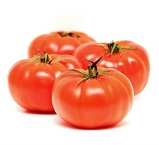 Red Large Tomato   20 SEEDS