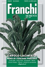 Franchi Seeds of Italy - Kale - Nero Di Toscana - Seeds