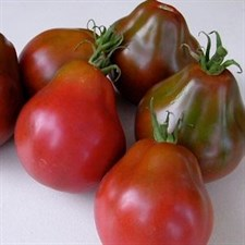 Tomato Japanese Black Trifele 20 seeds