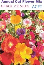 WINTER  Annual Cut Flower Mix