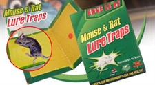Mouse & Rat Lure Traps