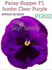 Pansy Supper F1 Jumbo Clear Purple