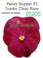 Pansy Supper F1 Jumbo Clear Rose