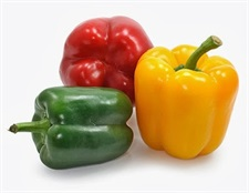 CAPSICUM  Mixed  20 seeds