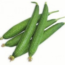 Sponge gourd Selected  Seeds