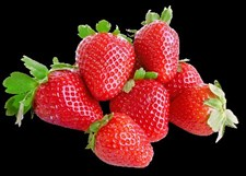 Strawberry plug plants  30 plants offer