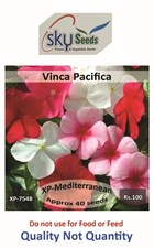 vinca mix Mediterranean XP