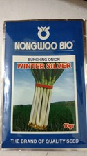 BUNCHING ONION  WINTER SILVER  10 GM
