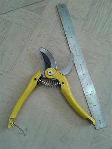 By-Pass Pruners