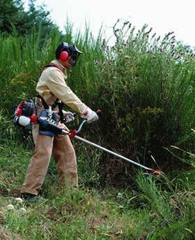 Garden tools grass cutting machine for rs for Gardening tools online in pakistan