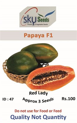 Vegetable Seeds Papaya F1 Red Lady In Pakistan For Rs 10000
