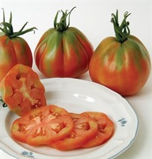 tomato  Red Pear Piriform
