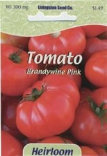 Tomato - Heirloom - Brandywine Pink